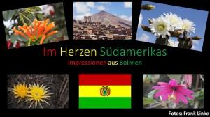 Bolivien-  Mauritianum