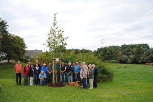Dorflindenpflanzung in Wettelswalde