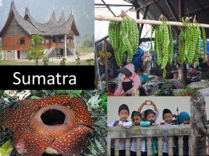 Sumatra (Indonesien)